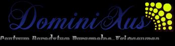 Logo - DominiXus